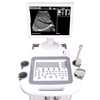 Изображение Mobile Benchtop Diagnostic Ultrasound System Workstation